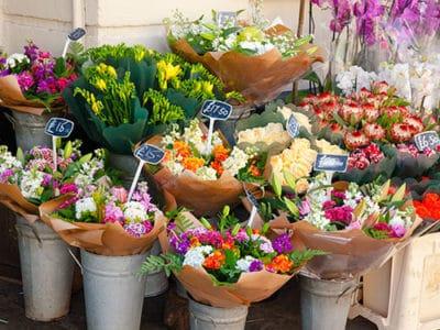 Fleuristes, Déco et Cadeaux